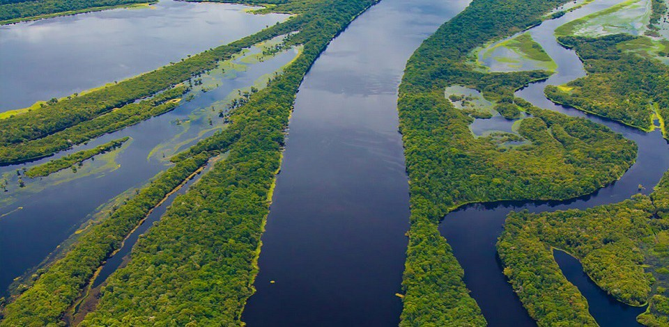 Protegendo a Amazônia